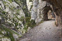 Ущелье забот реки в Астурии Стоковое Фото