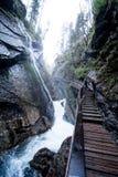 Ущелье на Wimbach в Bavarias Berchtesgaden Nationalpark Стоковая Фотография