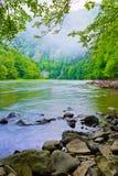 Ущелье реки горы в утре Стоковое фото RF