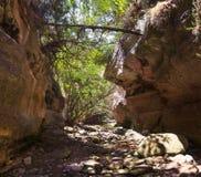 Ущелье Avakas Полуостров Akamas Кипр стоковая фотография