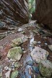 Ущелье Avakas Полуостров Akamas Стоковые Фото