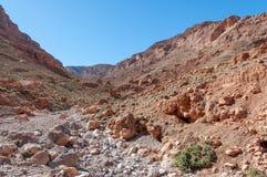 Ущелье Dades в Марокко, Африке Стоковое Изображение