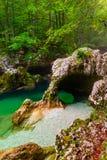 Ущелье Mostnica, Bohinj, Словения Стоковая Фотография RF