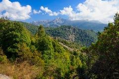 Ущелье Prunelli Стоковое Фото