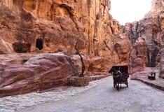 Ущелье Siq, Petra стоковые фото