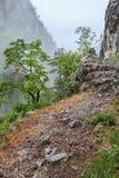 Ущелье Tasnei, Румыния Стоковые Фотографии RF