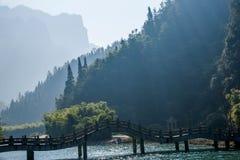 Ущелье Tianshui моря Хубэй Zigui Three Gorges бамбуковое Стоковые Фото