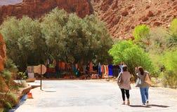 Ущелье Todra в Марокко Стоковая Фотография