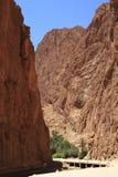 Ущелье Todra Стоковое фото RF