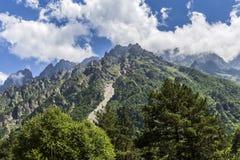 Ущелье Tseyskoe Горы Стоковые Фото
