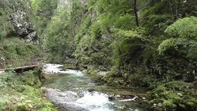 Ущелье Vintar, река radnova, Словения акции видеоматериалы