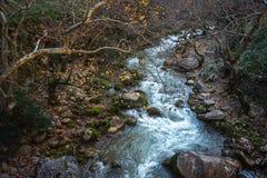 Ущелье Vouraikos, Пелопоннес, Греция Стоковые Изображения RF