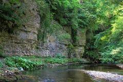 Ущелье Wutach стоковое фото