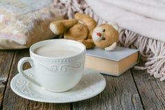 Уютная теплая шотландка и милая игрушка на ей Стоковые Фотографии RF