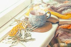 Уютное утро осени дома Стоковые Изображения RF