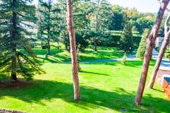 Уютные лужайки парка с растя травой, соснами и другими вечнозелеными деревьями в Ватикане, Риме, Италии стоковое изображение