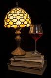 Уютный вечер прочитанный с красным вином Стоковое Изображение RF