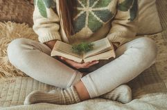 уютный дом Красивая девушка читает книгу на кровати доброе утро с чаем детеныши девушки довольно ослабляя Концепция чтения стоковые изображения rf
