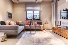Уютный интерьер живущей комнаты Стоковые Изображения RF