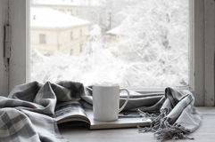 Уютный натюрморт зимы Стоковые Фото
