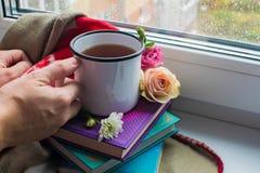 Уютный натюрморт: кружка горячих чая, книг и цветков с теплой шотландкой на windowsill Дождливый день снаружи Чтение, осень и зим стоковые фотографии rf