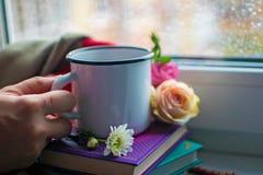 Уютный натюрморт: кружка горячих чая, книг и цветков с теплой шотландкой на windowsill Дождливый день снаружи Чтение, осень и зим стоковое фото