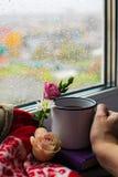 Уютный натюрморт: кружка горячих чая, книг и цветков с теплой шотландкой на windowsill Дождливый день снаружи Чтение, осень и зим стоковые изображения
