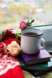 Уютный натюрморт: кружка горячих чая, книг и цветков с теплой шотландкой на windowsill Дождливый день снаружи Чтение, осень и зим стоковые фото