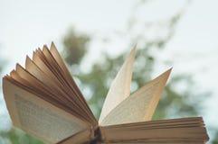 Уютный натюрморт осени: чашка горячего кофе и раскрытой книги на винтажном windowsill и дожде снаружи Осень афоризмов дождь стоковые фотографии rf