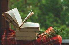 Уютный натюрморт осени: чашка горячего кофе и раскрытой книги на винтажном windowsill и дожде снаружи Осень афоризмов дождь стоковое изображение rf