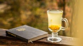 Уютный натюрморт: чашка горячего чая крушины моря и библия книги на винтажном windowsill против теплого ландшафта от внешней стор стоковая фотография rf