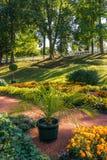Уютный сад Стоковое Фото