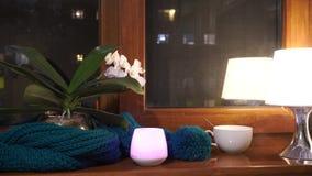 Уютный свет свечи накаляя в темноте окном и лампой Уютный свет свечи накаляя в темноте окном видеоматериал