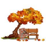 Уютный стенд под деревом осени На открытом воздухе мебель изолированная на белой предпосылке Эскиз на теме золотого иллюстрация штока