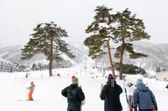 Ударять наклоны снега в зиму стоковые изображения rf