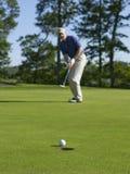 Удар, загоняющий мяч в лунку раковин игрока в гольф на зеленом цвете Стоковая Фотография RF
