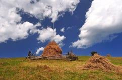 Удар соломы в поле Стоковые Фото