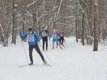 Удар лыжи вальса i стоковое изображение rf