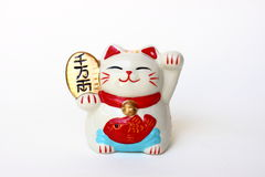 удачливейшее кота японское Стоковое фото RF