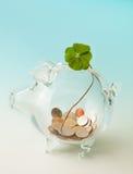 удачливейшие деньги Стоковое Фото