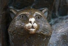 Удачливейший кот Стоковые Фотографии RF