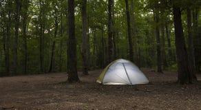 Удаленное место для лагеря Uwharrie Стоковая Фотография