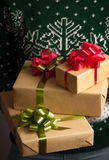удерживание девушки подарка рождества Стоковые Изображения
