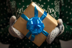 удерживание девушки подарка рождества Стоковое Изображение RF