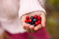 удерживание ребенка ягод Стоковые Изображения RF