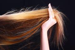 удерживание руки стиля причёсок волос Стоковое Изображение RF