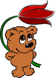 удерживание цветка медведя милое Стоковые Фото