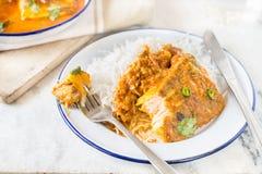 Удите в Curried рецепте соуса кокоса в индийском стиле Стоковые Изображения