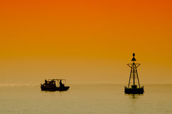 Удить на цветах захода солнца Стоковое фото RF