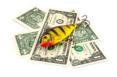 Удить прикорм с деньгами Стоковое фото RF